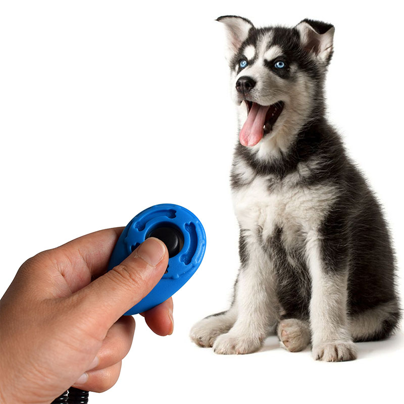 4PCS Dog Cat Training Clicker, Clickers with Wrist Bands - Pet Training Clicker Set, Four Colors