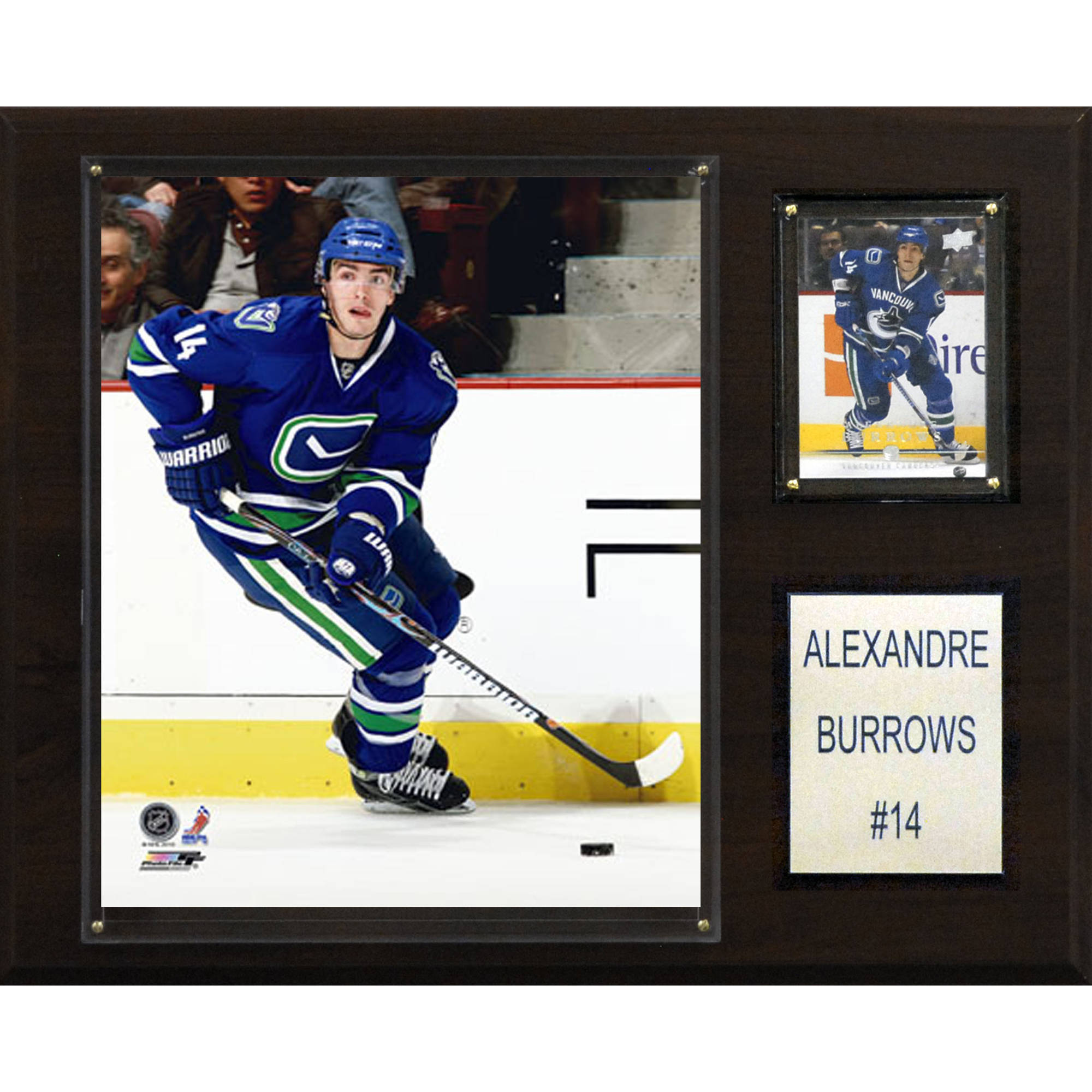 C&I Collectables NHL 12x15 Alex Burrows Vancouver Canucks Player Plaque
