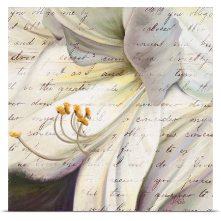 Great Big Canvas Patricia Pinto Poster Print Entitled Lily Script I