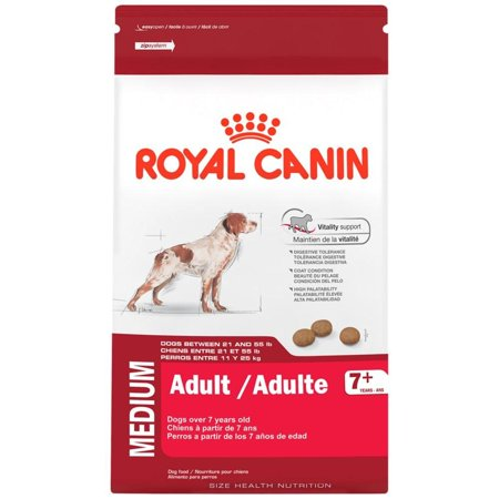 ROYAL CANIN Canine Gastrointestinal Low Fat Dry (6.6 (Best Low Fat Dry Dog Food)