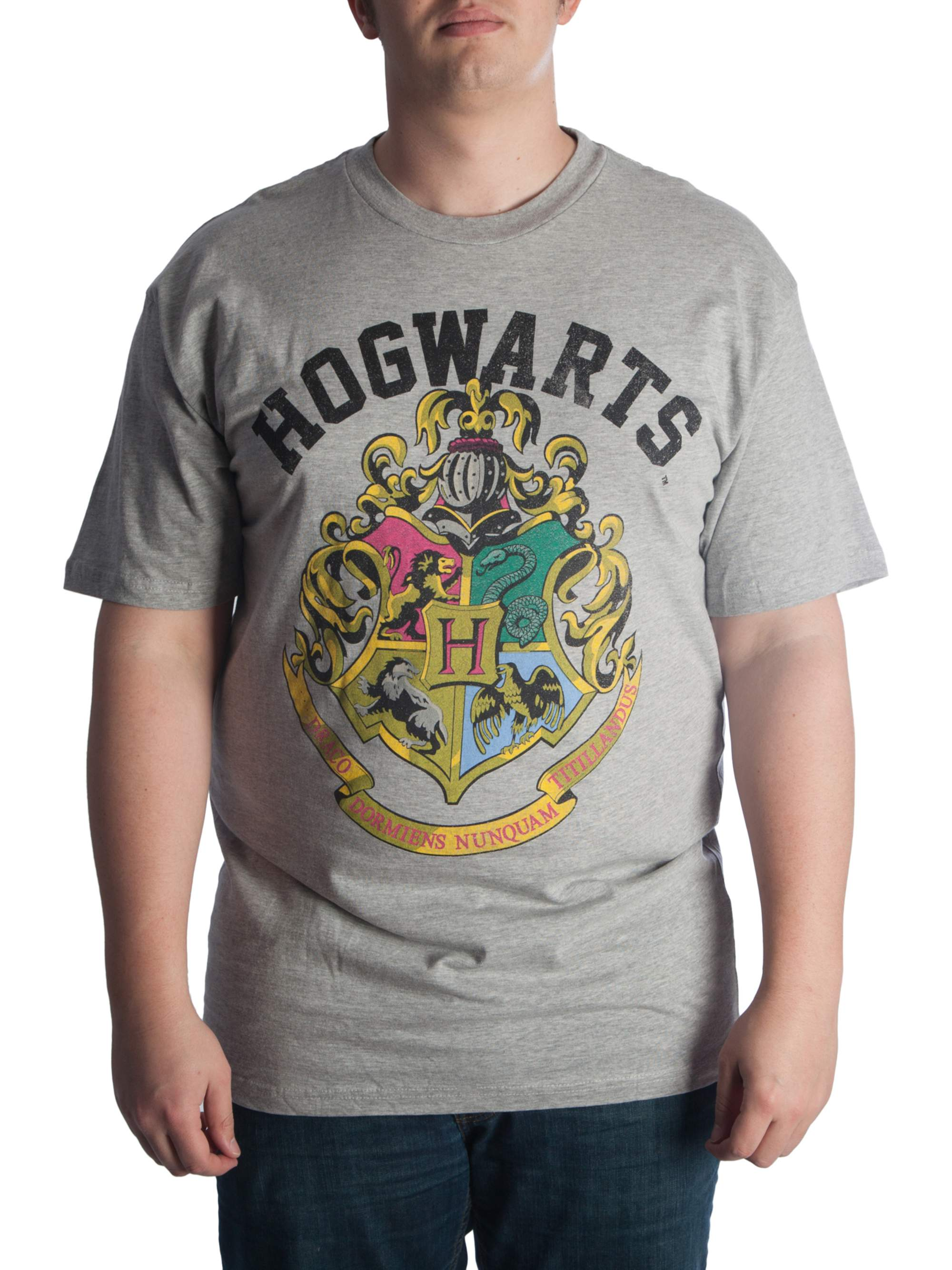 Harry Potter Big Men's Hogwarts Crest Graphic T-Shirt, Up To 6XL