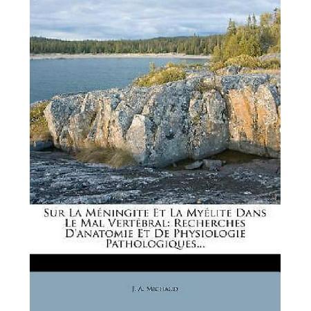 Sur La Meningite Et La Myelite Dans Le Mal Vertebral: Recherches D'anatomie Et De Physiologie Pathologiques... (French Edition) - image 1 of 1