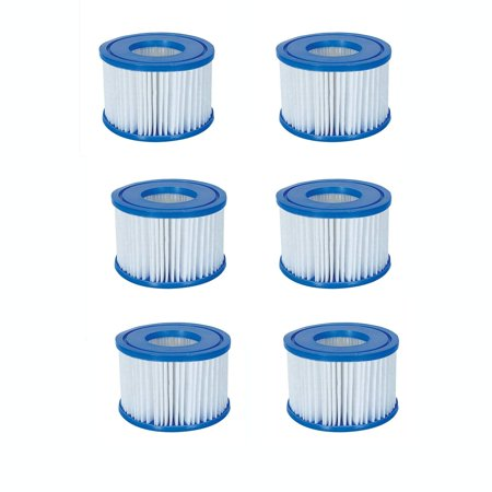 Spa Filter Pump Replacement Cartridge Type VI (6 Pack), Replacement cartridge for the Coleman inflatable Spa By (Best Way For Older Women To Lose Weight)