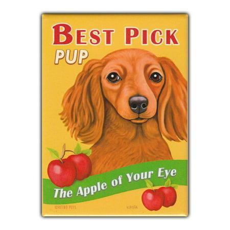 Retro Pets Refrigerator Magnet - Best Pick Pup Apples, Dachshund - Vintage Advertising Art - 2.5