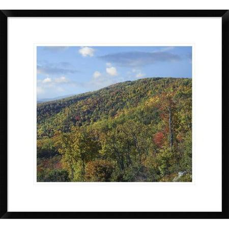Global Gallery Blue Ridge Range From Moormans River Overlook  Shenandoah National Park  Virginia Framed Photographic Print