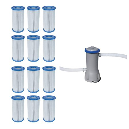 Pool Filter Pump Cartridge Type-III (12 Pack) + Pool Filter Pump System (Best Way To Remove Thc From Your System)