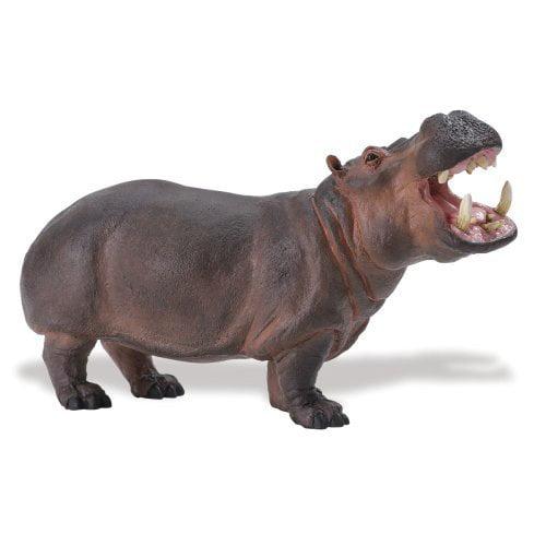 Safari Ltd Wildlife Wonders Hippo