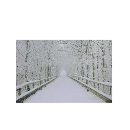 Small Fiber Optic Wooden Bridge Canvas Wall (Fiber Optic Wall)