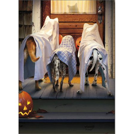 Halloween Cards Made With Cricut (Avanti Press 3 Dogs Trick Or Treating Funny / Humorous Halloween)