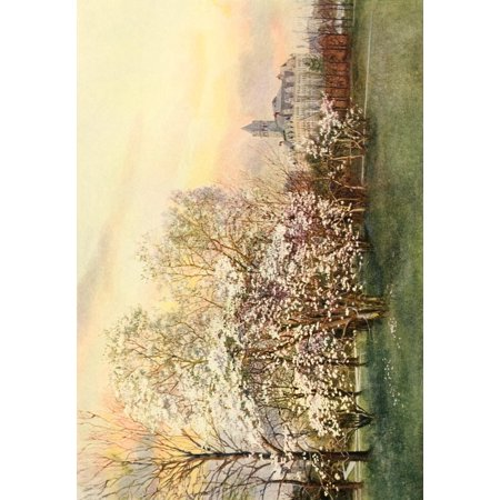 The Lure Of Washington 1920 Us Post Office   Magnolias Canvas Art   Unknown  18 X 24