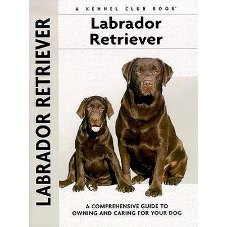 Labrador Retriever: A Comprehensive Guide To Owning And Caring For Your Dog