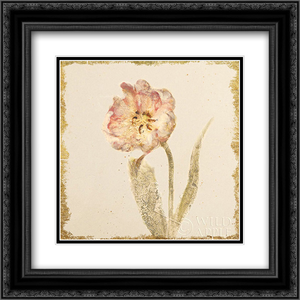 Vintage May Wonder Tulip Crop 2x Matted 20x20 Black Ornate Framed Art Print by Blum, Cheri
