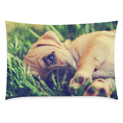 ZKGK Cute Puppy Dog Home Decor, Animal Pug Soft Pillowcase 20 x 30 Inches Two Side,Green Grass Pillow Cover Case Shams Decorative