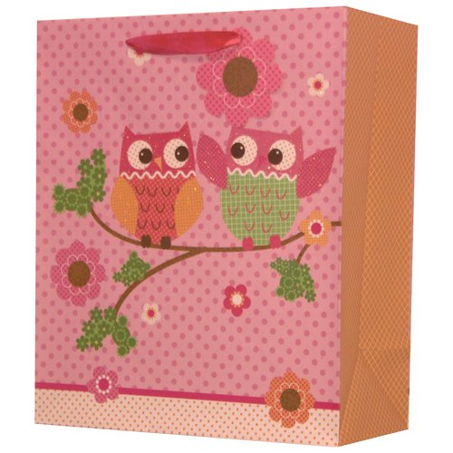 Best Occasions Owl Gift Bag