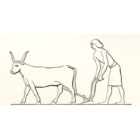 Ploughing with oxen in ancient Egypt From The Imperial Bible Dictionary published 1889 Canvas Art - Ken Welsh Design Pics (19 x 10)