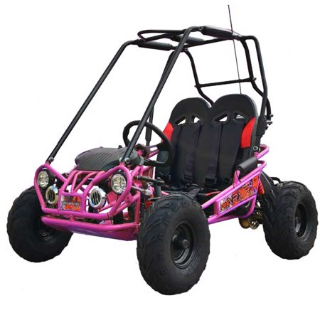 Pink TrailMaster Mini XRX/R+ (Plus) Upgraded Go Kart with Bigger Tires, Frame, Wider Seat