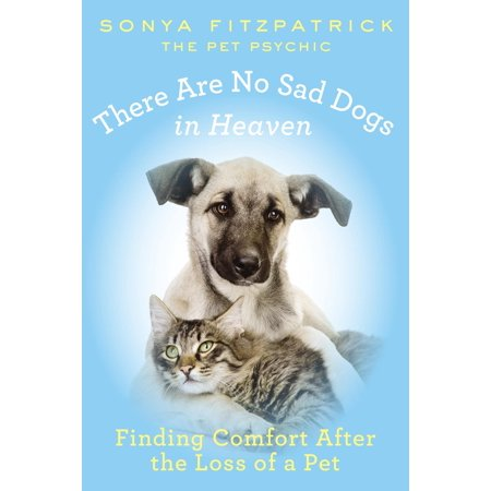 There Are No Sad Dogs in Heaven : Finding Comfort After the Loss of a Pet Rainbow Bridge Poem Pet Loss