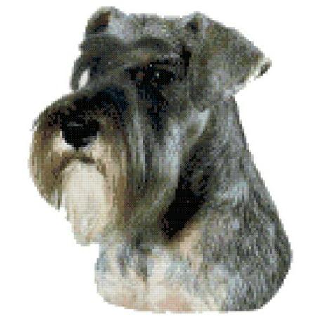 Miniature Schnauzer Euro Dog Portrait Counted Cross Stitch - Halloween Cross Stitch Pattern