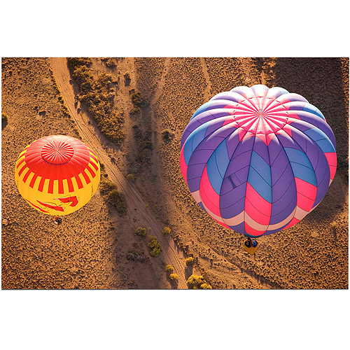 "Trademark Fine Art ""Balloon Duet"" Canvas Art by AIANA, 16x24"