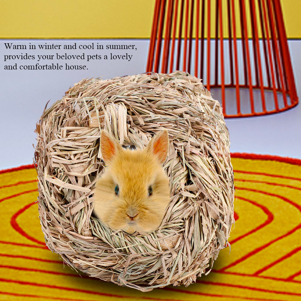 Chew Toy Summer Pet House for Guinea Pig for Hamster
