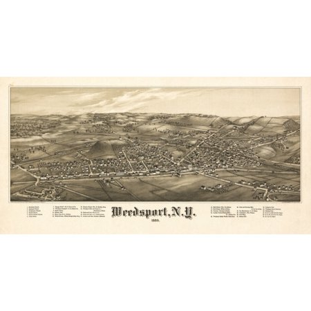 Historic Map of Weedsport New York 1885 Cayuga County Canvas Art -  (18 x 24)