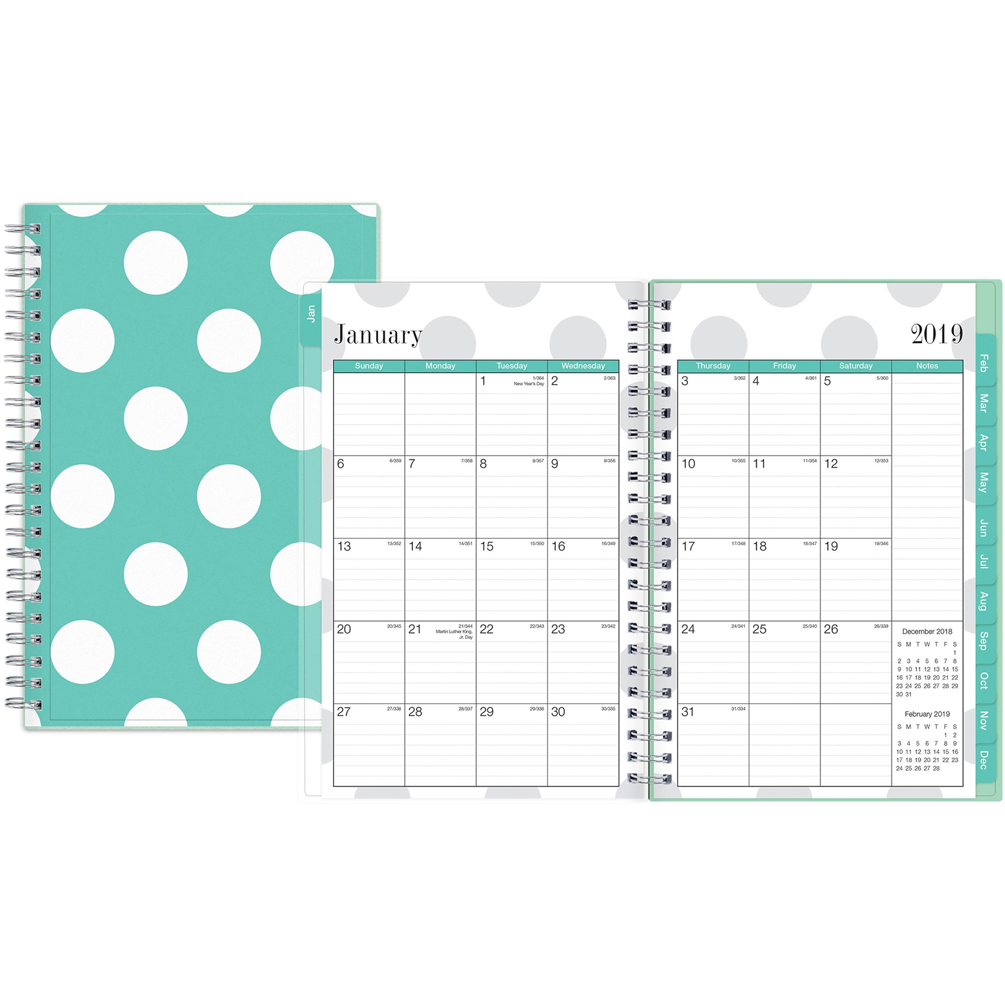 Blue Sky, BLS100656, Penelope Weekly/Monthly Planner, 1 Each, Clear,Multi