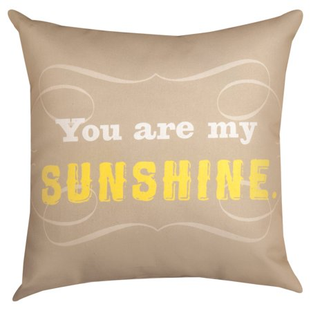 Manual You Are My Sunshine Decorative Pillow Walmart New You Are My Sunshine Decorative Pillow