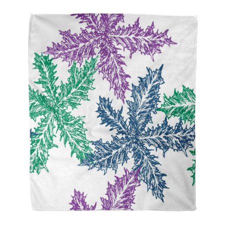 ASHLEIGH Throw Blanket 58x80 Inches Silybum Marianum Cardus Marianus Milk Thistle Blessed Marian Mary Scotch Doodle Warm Flannel Soft Blanket for Couch Sofa