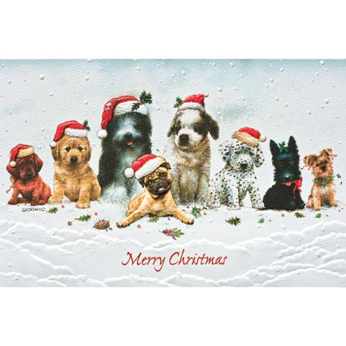 Pack of 16 Holiday Dogs Fine Art Embossed Deluxe Christmas Greeting Cards
