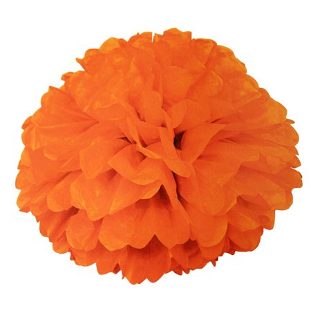 Tissue Paper Pom Pom, 16 in, Orange, 1ct](Halloween Poem Cute)