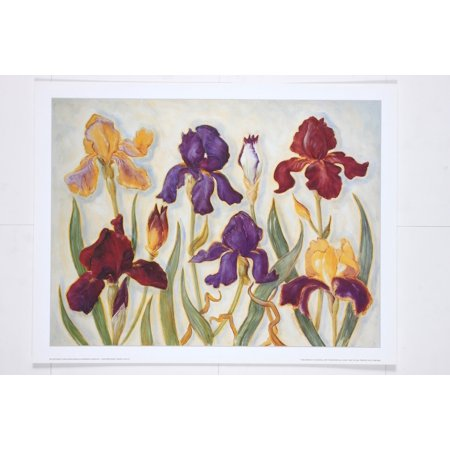 Contemporary Irises - POSTER PRINT by Alexandra Churchill (13.5 x 15.5 in)