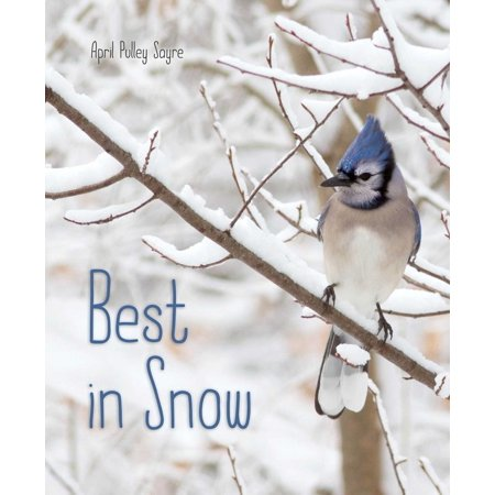 Best in Snow - eBook