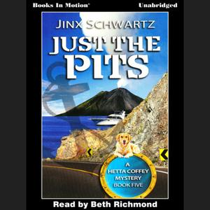 Just the Pits - Audiobook