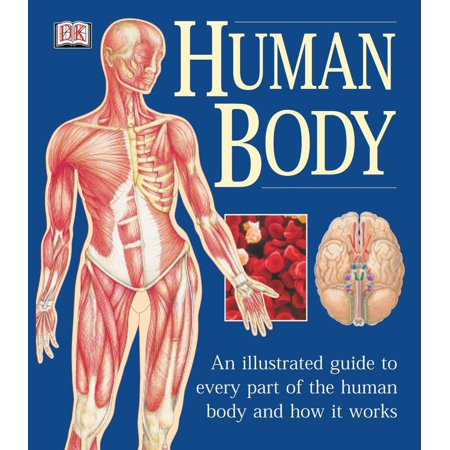 The Human Body : An Illustrated Guide to Every Part of the Human Body and How It (List Of Enzymes In The Human Body)