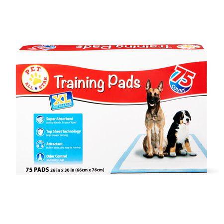 Shop Pet All Star Dog Training Supplies!