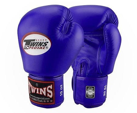 Twins Special Muay Thai Boxing Gloves Thailand Flag