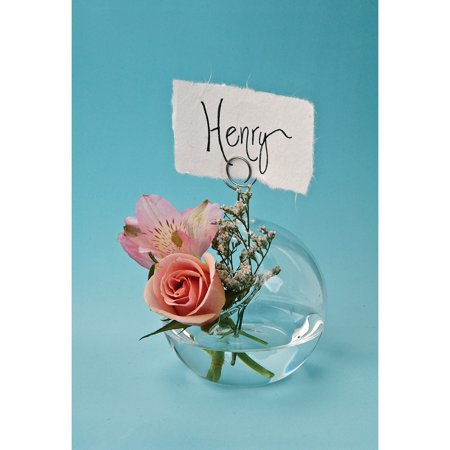 Luna Bazaar Medium Glass Place Card Holder and Vase (3-Inch, Globe, Wire Design) - For Home Decor and Wedding Tabletop Crom Argyle Wire Glass