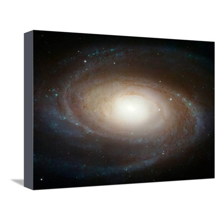 Hubble Photographs Grand Design Spiral Galaxy M81 Space Photo Art Poster Print Stretched Canvas Print Wall Art