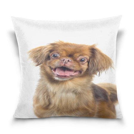 Pekingese Pillow - POPCreation Pekingese Throw Pillow Case Vintage Cushion Cover 18x18 inches