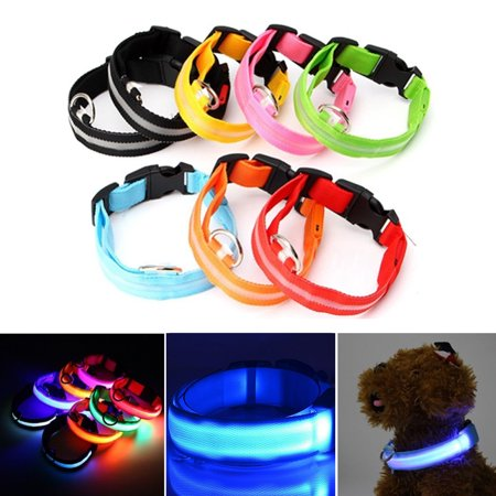 Cotton Collar Light (Spencer LED Dog Collar, USB Rechargeable Safety Light Up Glowing Pet Collars for Dog with Nylon Webbing, 3 Glowing Modes & 3 Reflective Strings Perfect for Small, Medium Dogs