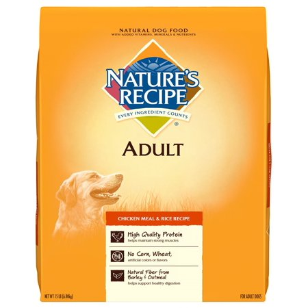 Nature's Recipe Adult Chicken Meal & Rice Recipe Dry Dog Food, - Best Halloween Party Food Recipes