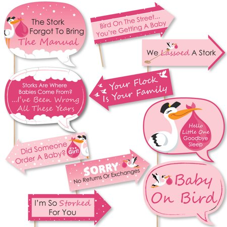 Funny Girl Special Delivery - Pink It's A Girl Stork Baby Shower Photo Booth Props Kit - 10 Piece