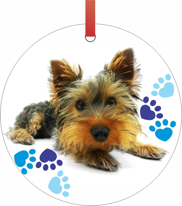Ornament Yorkie Yorkshire Terrier Puppy with Pawprints ...