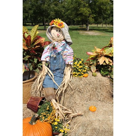 Canvas Print Gourds Halloween Pumpkins Scarecrow Fall Stretched Canvas 10 x 14