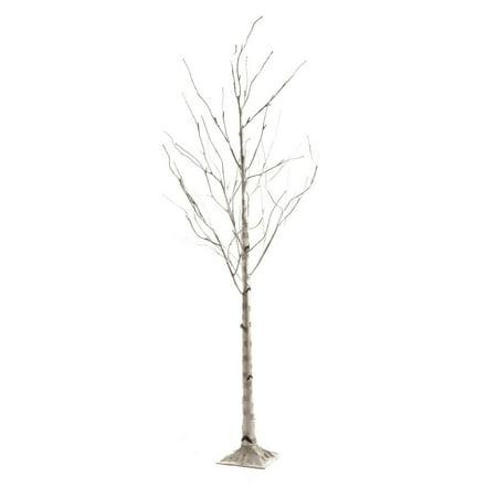 Tripar International, Inc. White Birch 72-inch Lighted Tree ()