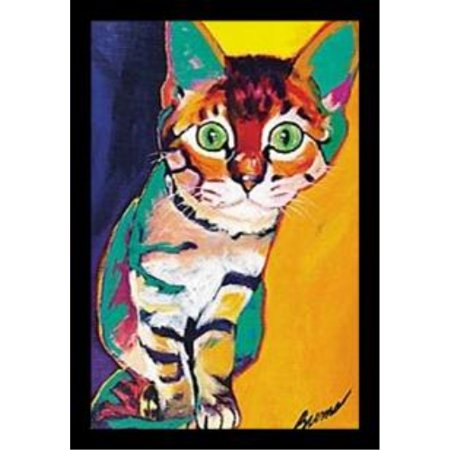 Framed Tiger By Ron Burns 20X13 5 Art Print Poster Cat Kitten Cute Colorful