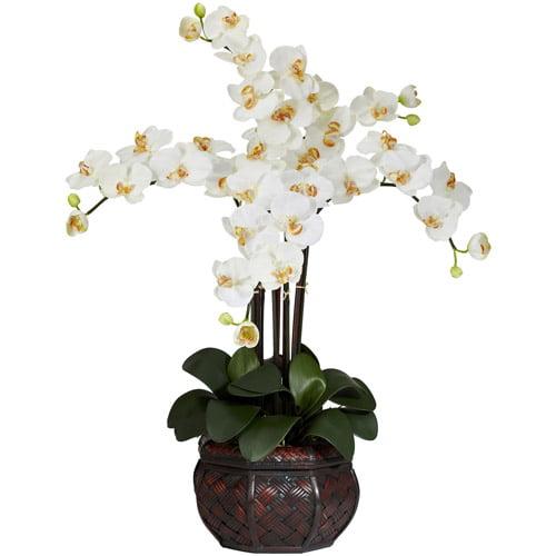 Phalaenopsis with Decorative Vase Silk Flower Arrangement, Cream