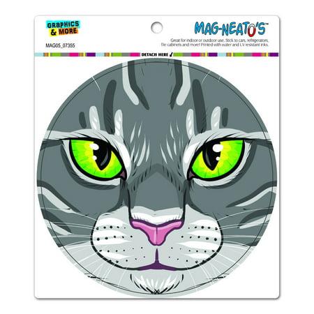 Gray Tabby Cats - Grey Gray Tabby Cat Face - Pet Kitty Circle MAG-NEATO'S(TM) Car/Refrigerator Magnet