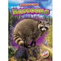 Animals of the Forest: Raccoons (Hardcover)