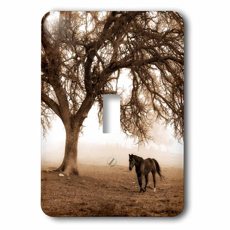 3dRose Western Sepia Toned Horse on a Ranch with an Oak Tree, 2 Plug Outlet Cover Oak Tree Ranch